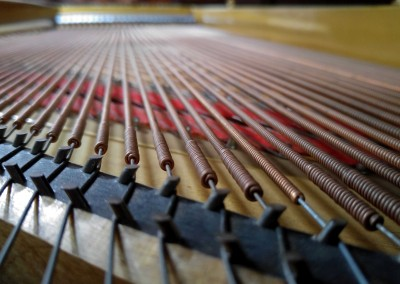 Piano_Bridge_Bass_Strings_Soundboard